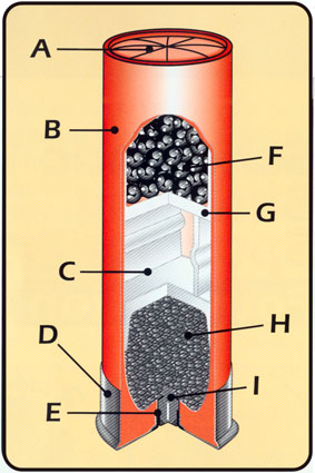shotshell diagram
