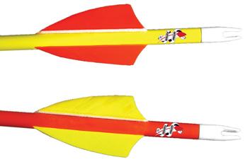 Gateway Rayzer Feather