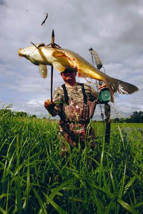 bowfishing fun
