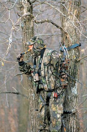 evening ridge hunting