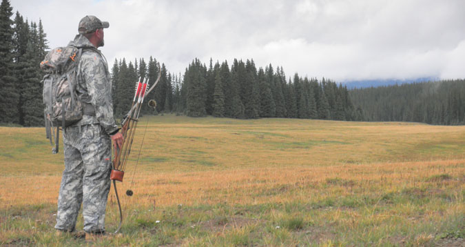 elk hunting meadow