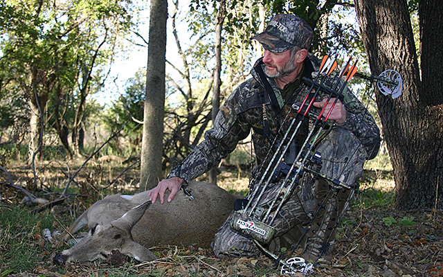 Why are so few deer being harvested these days?
