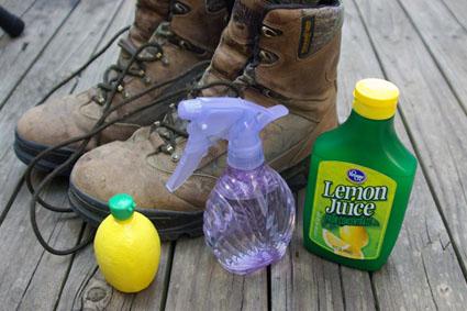 puppy lemon spray