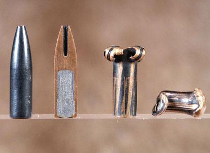 deer hunting bullet choice