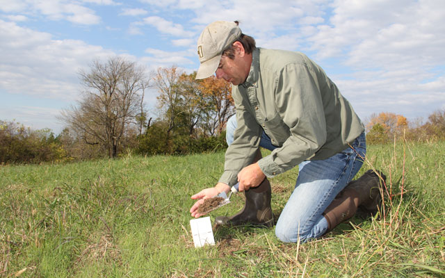 soil test on a food plot