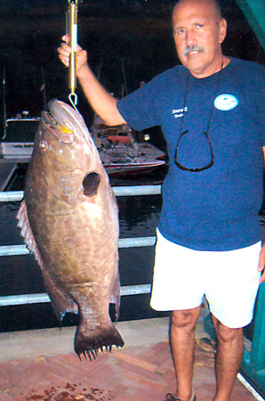 world record broomtail grouper