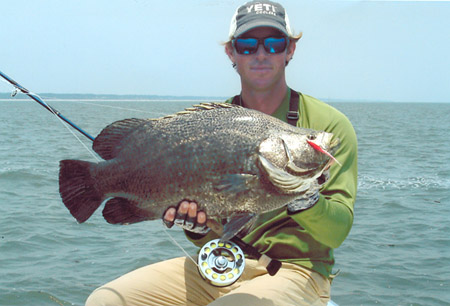 world record tripletail
