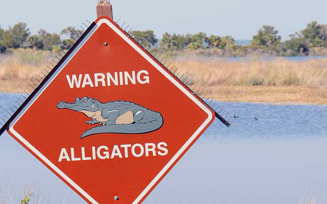 GatorWarning