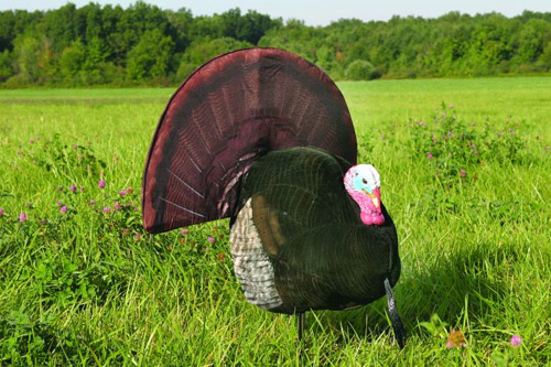Flambeau Flocked King Strut decoy