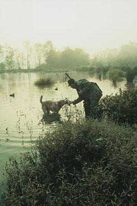 early season hunting