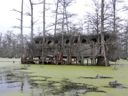 beaver dam duck hunting