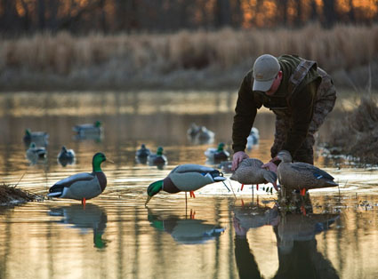 small water duck hunting