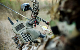3 Reasons Why Bowhunters Should Set Their Sights on Coyotes