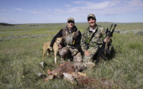 Shoot More Coyotes in Summer, Save More Fawns for Autumn
