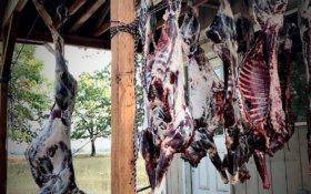 5-Step Plan for Warm Weather Game Meat Care