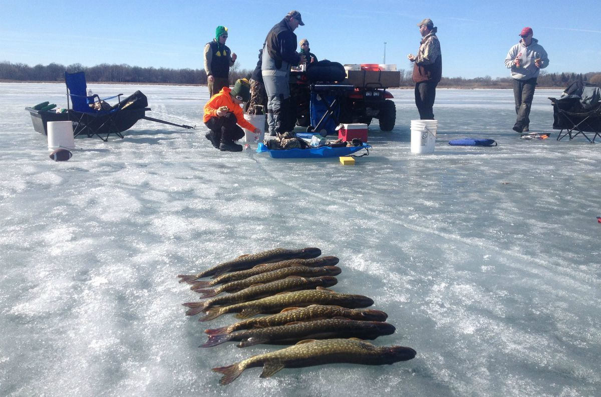 A Beginner's Guide to Catching Northern Pike… | Grand View