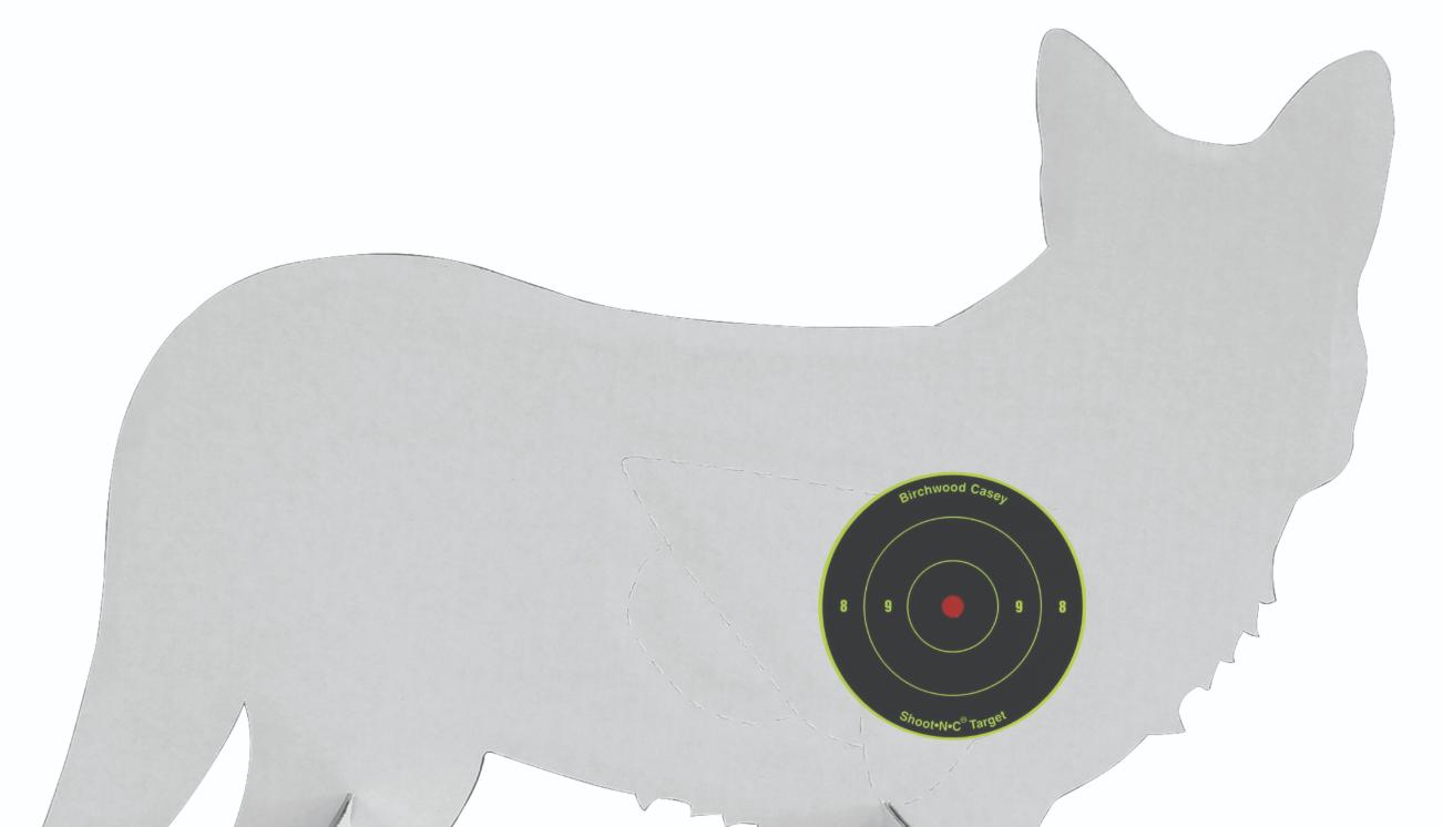 Pattern Your Shotgun to Put Down More Predators | Grand View