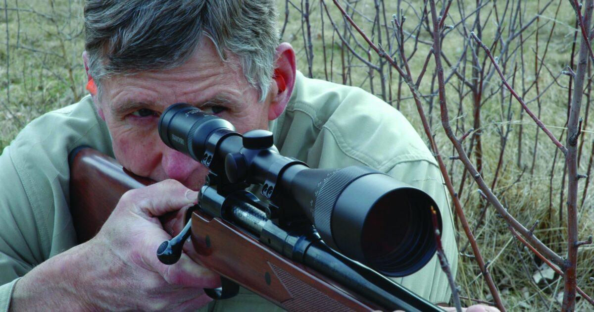 Why My Favorite Predator Rifles Always Worked | Grand View