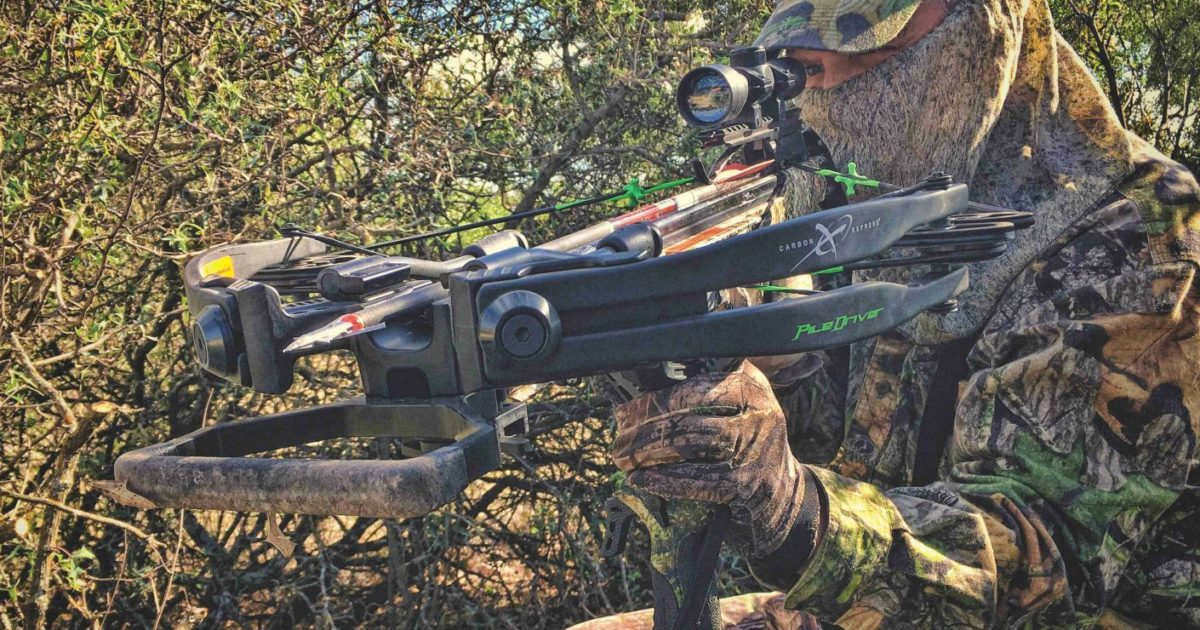 Axis Deer: The Best Value in Bucket List… | Grand View Outdoors