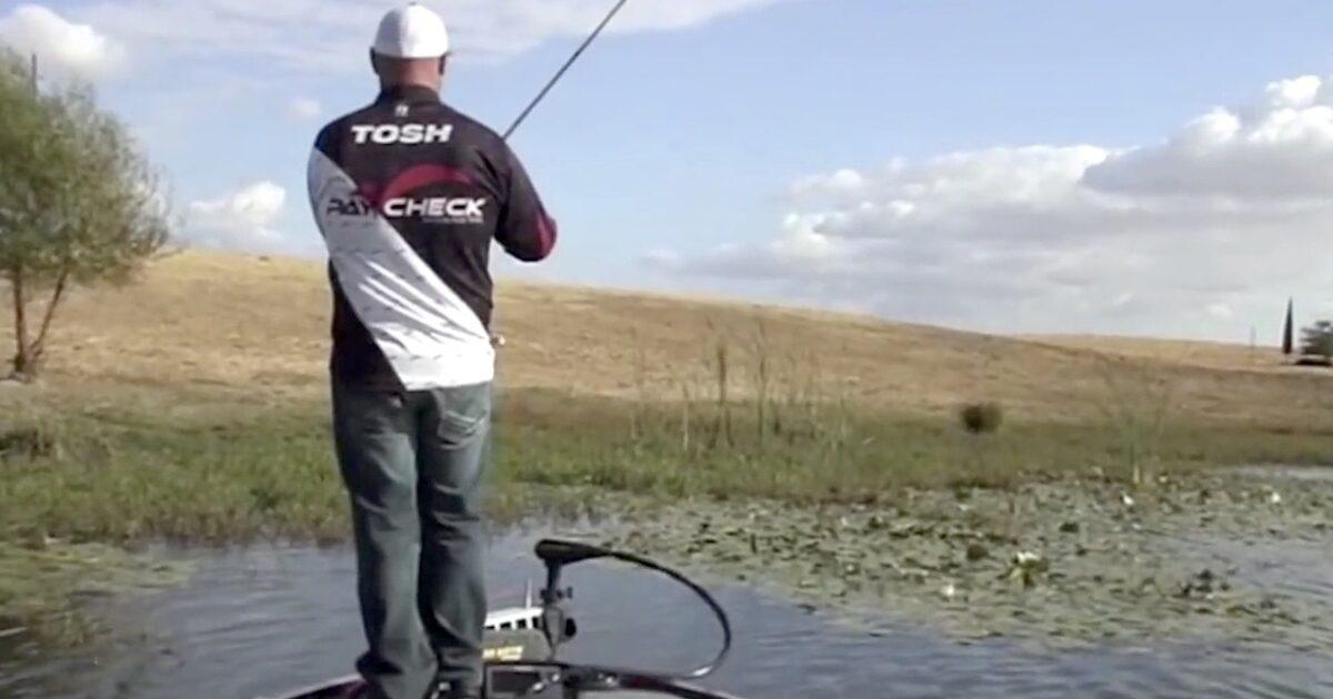Gary Yamamoto Psycho Dad 4 inch 5pk Soft Plastic Bass Fishing Craw Bait