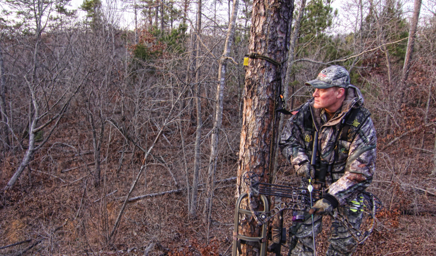 What Statistics Say About Falling From a… | Grand View Outdoors