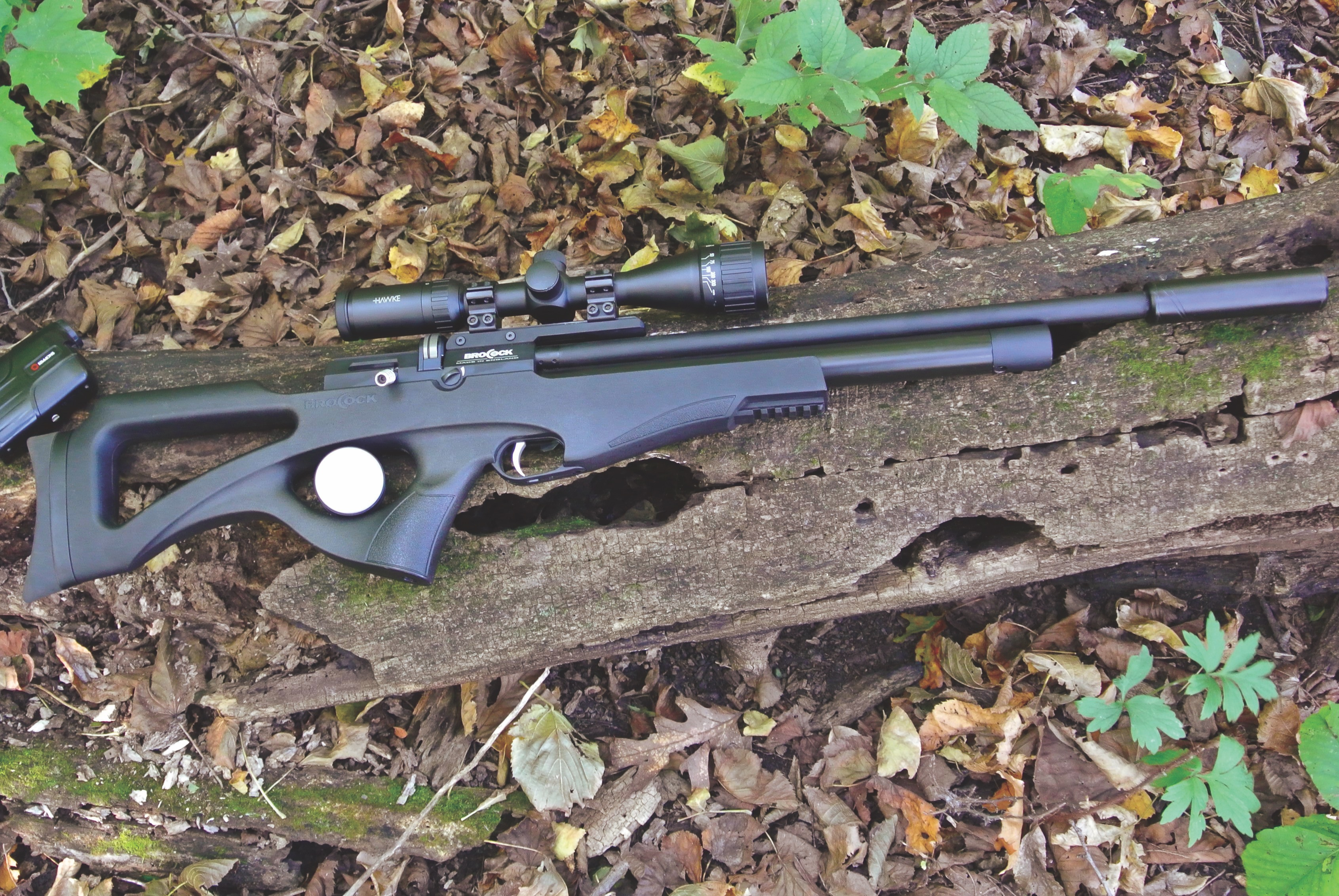 Airguns and feral hogs: going small bore for… | Grand View
