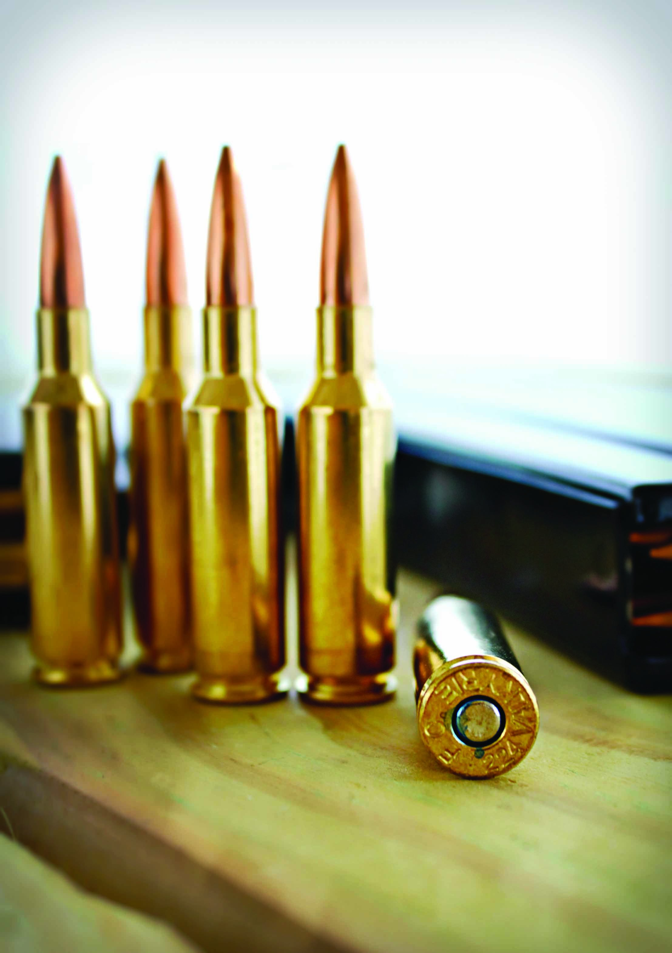 is this the next great ammo for predator grand view outdoors
