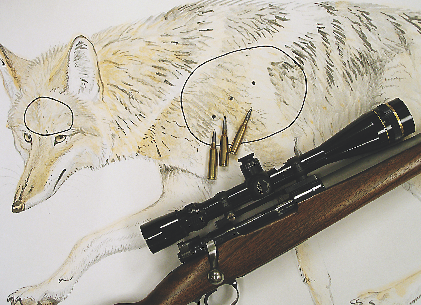 Making the Case for Fast-Twist Varmint Rifles | Grand View