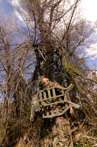 hiding your treestand
