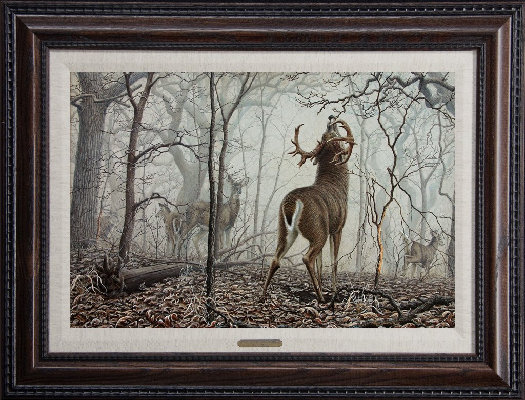 whitetail painting